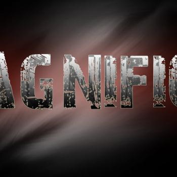 Magnifico (Elvijs P.) Dzeja