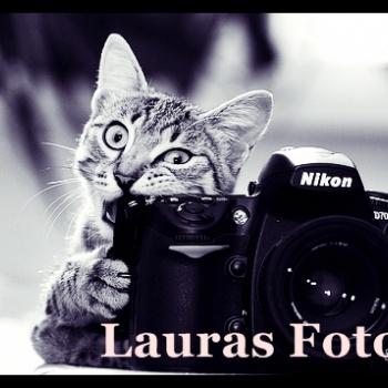 Lauras Foto